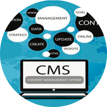 Custom-CMS-Design-Agency-India